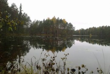 Holma-Saarijärvi i bakgrunden
